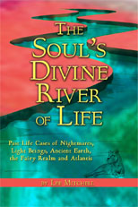 soulsdivineriveroflife_lee_mitchell_book_cover