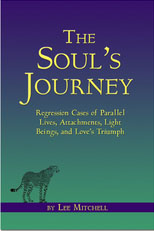 souls_journey_lee_mitchell_book_cover